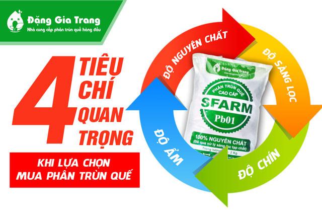4-tieu-chi-quan-trong-khi-lua-chon-mua-phan-trun-que