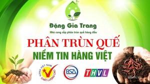 phan-trun-que-DGT