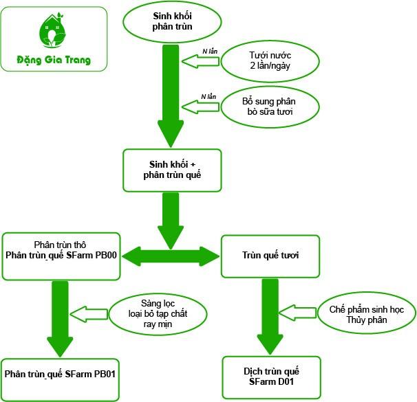 quy trình sản xuất phân trùn quế sfarm