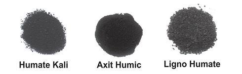 1 axit humic