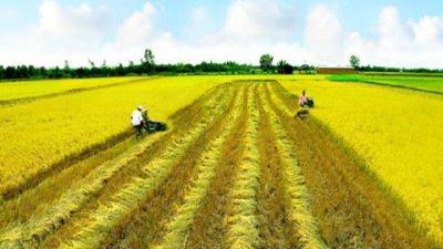 tái cơ cấu nền nông nghiệp