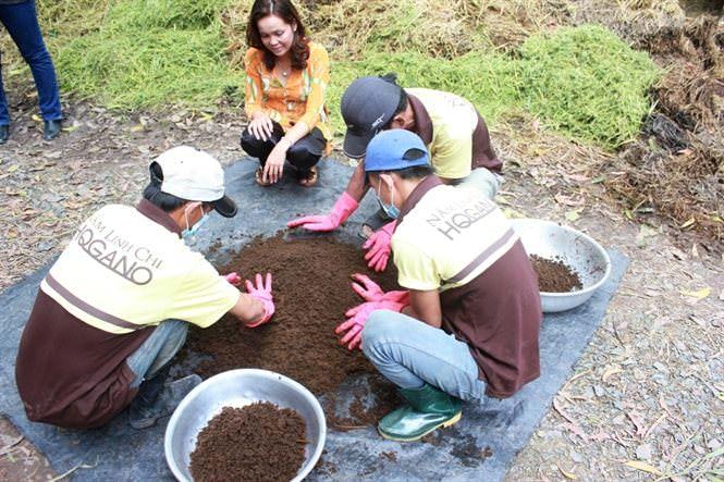 bí quyết trồng nấm linh chi hữu cơ thành công