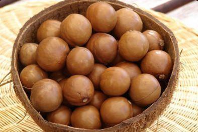 đặc sản ăn tết hạt mắc ca 2