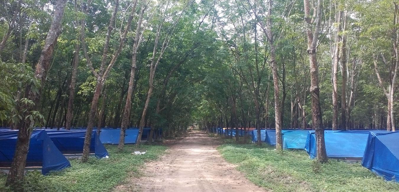 Trang trại trùn quế ĐẶNG GIA TRANG