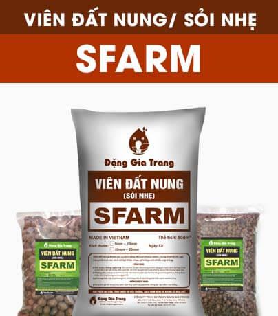 vien-dat-nung-soi-nhe-sfarm (1)