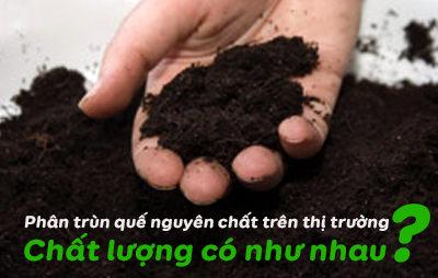 chat-luong-phan-trun-que-nguyen-chat-co-nhu-nhau