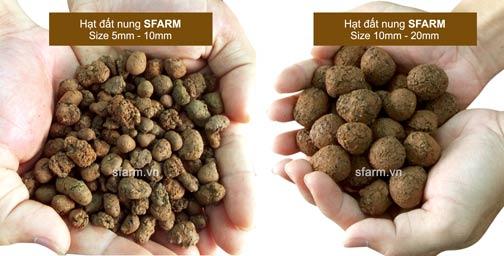 vien-dat-nung-sfarm-size.jpg