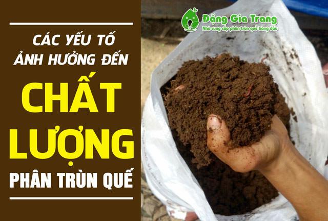 cac-yeu-to-anh-huong-den-chat-luong-phan-trun-que