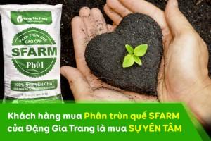 khach-hang-mua-phan-trun-que-sfarm-dang-gia-trang-la-mua-su-yen-tam
