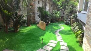 cỏ-cảnh-quan
