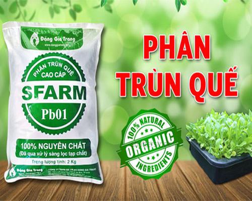 phan-trun-que-Sfarm-Dang-Gia-Trang