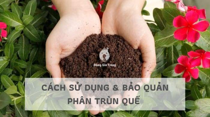 Cách sử dụng & bảo quản phân trùn quế hiệu quả nhất