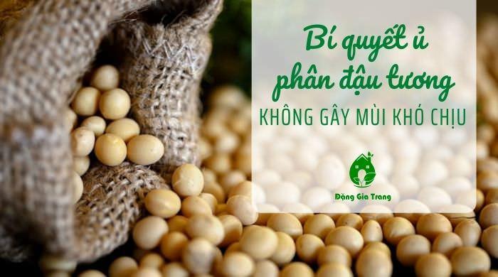 Bí quyết ủ phân đậu tương không gây mùi khó chịu